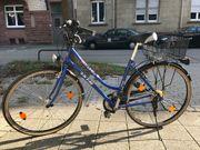 KTM Trento Fahrrad