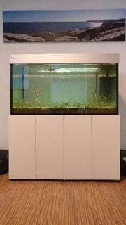 Giesemann 300 l Aquarium incl