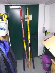 Langlauf - Ski - diverse für Skating