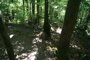 Freizeitgrundstück mit Wald