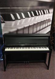 UP-1 Upright E-Piano