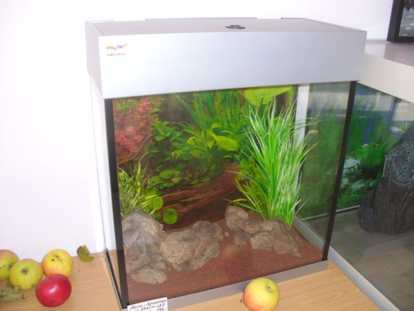 aquaristik in otterberg bei deinetierwelt. Black Bedroom Furniture Sets. Home Design Ideas