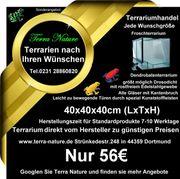 Dendrobaten-Terrarium 40x40x40cm LxTxH Froschterrarium