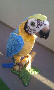Verkaufe Papagei von Hasbro