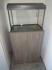 60 Liter Aquarium