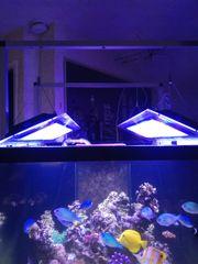 2 x Aquariumlampen